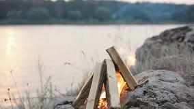 Gör branden i natur stock video