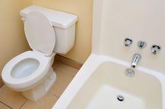 gör ren den lyxiga toaletten Arkivbild