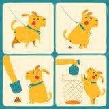 Gör ren efter din hund Arkivfoton