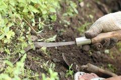Gör ren gräset i gården, version 1 Arkivbilder