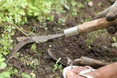 Gör ren gräset i gården, version 2 royaltyfri fotografi