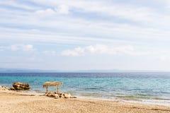 Gör suddig den härliga naturgräsplanpalmbladet på den tropiska stranden med bakgrund för abstrakt begrepp för den ljusa vågen för Royaltyfri Bild