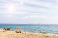 Gör suddig den härliga naturgräsplanpalmbladet på den tropiska stranden med bakgrund för abstrakt begrepp för den ljusa vågen för Arkivfoto