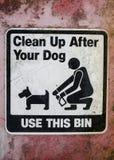 Gör upp ren efter din hund Arkivbild