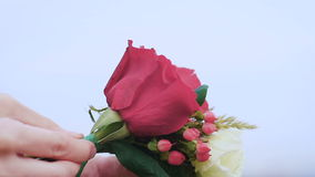 Göra en blomma att samla ihop på det gröna fältet arkivfilmer