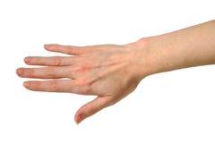 göra en gest handmanicurekvinna Royaltyfri Bild
