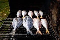 Göra fisken på en bbq att grilla gallret över varmt kol Arkivbilder