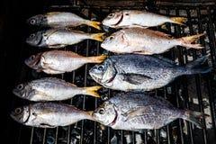 Göra fisken på en bbq att grilla gallret över varmt kol Royaltyfri Foto