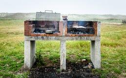 Göra fisken på en bbq att grilla gallret över varmt kol Royaltyfri Bild