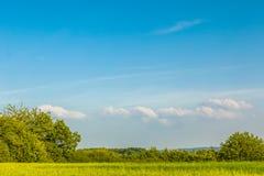 Göra grön det plana fältet med himmel i sommar Arkivfoto