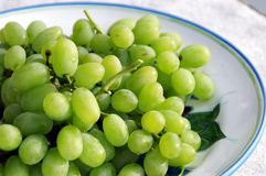 Göra grön druvor royaltyfri fotografi