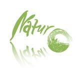 Göra grön ett handskrivet tecken med textnaturen som är passande för en logo, isolerat på vit bakgrund Fotografering för Bildbyråer