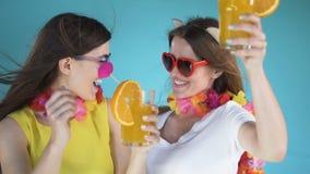 Göra perfekt ferier i Hawaii stock video