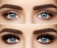 Göra perfekt form av ögonbryn och extremt långa ögonfrans Makroskottet av mode synar anlete För och after arkivfoton