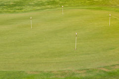 Göra perfekt krabbt gräs på ett golffält Arkivfoton