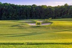Göra perfekt krabbt gräs på ett golffält Royaltyfria Bilder