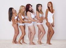 Göra perfekt kroppar i varje format Arkivbild