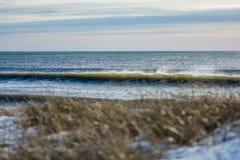 Göra perfekt vågen på en solig dag med förgrundsbakgrundsbohkeh Royaltyfria Foton