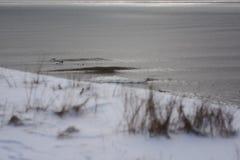 Göra perfekt vågen på en solig dag med förgrundsbakgrundsbohkeh Arkivfoton