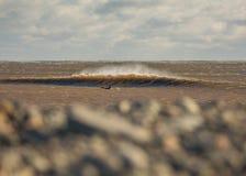 Göra perfekt vågen på en solig dag med förgrundsbakgrundsbohkeh Fotografering för Bildbyråer