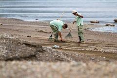 Göra ren upp stranden Royaltyfria Foton