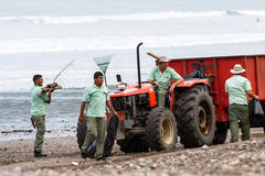 Göra ren upp stranden Royaltyfria Bilder