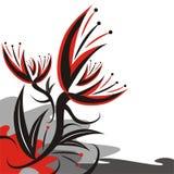 göra sammandrag blommor Fotografering för Bildbyråer
