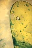 Cell Royaltyfria Foton