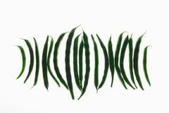 Göra sammandrag texturerad bakgrund, Backlit av franska haricot vert på vit Arkivbild