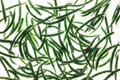 Göra sammandrag texturerad bakgrund, Backlit av franska haricot vert på vit Arkivbilder