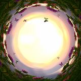 göra sammandrag virvlad runt bakgrund av magiska sagablommor och fjärilar på solnedgångljus royaltyfria bilder