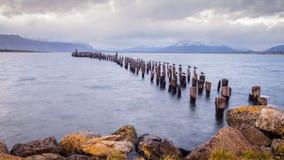 Göra till kung den Cormorant kolonin, den gamla skeppsdockan, Puerto Natales, antarktisk Patagonia, Chile Solnedgång arkivfoton