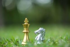 Göra till kung och adla schackstycken på sparat gräs arkivbild