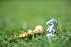 Göra till kung och adla schackstycken på sparat gräs royaltyfria foton
