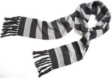 görad randig scarf arkivbilder