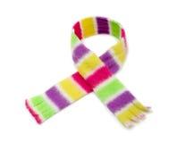 görad randig scarf Royaltyfria Foton