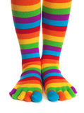 görade randig färgrika sockor Arkivfoto