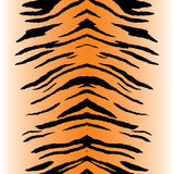 görar randig tigervektorn Royaltyfria Bilder
