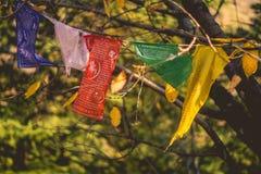 Göttin Durga Flags Stockfotografie
