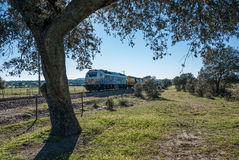 Güterzug, der die Landschaft kreuzt Stockfotografie