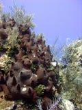 gąbka ciemny wulkan Obrazy Stock