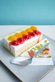 Gąbka tort z Świeżą owoc Zdjęcia Stock