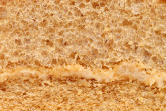 Gąbka torta tekstura Zdjęcia Stock