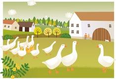 Gąski gospodarstwo rolne ilustracja wektor