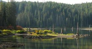 Gęsi jezioro - Wa, Gifford Pinchot las państwowy - zdjęcie stock