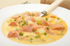 gęstej zupy rybnej łososia polewka Fotografia Stock