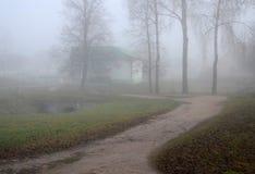 Gęsty całun mgła w Listopadzie zdjęcia royalty free