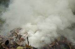 Gęsty dym Uwalnia od stosu liście obraz stock