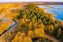 G?sty las otaczaj?cy jeziornym i rzecznym widokiem z lotu ptaka Pi?kny krajobraz zdjęcie royalty free