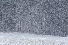Gęsty opad śniegu fotografia royalty free